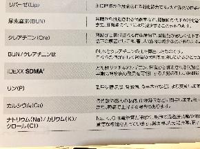 検査項目.JPG