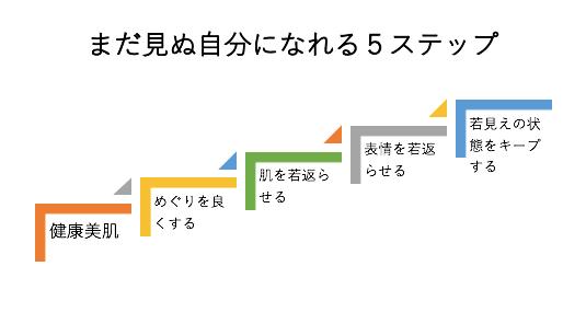 5ステップ.png