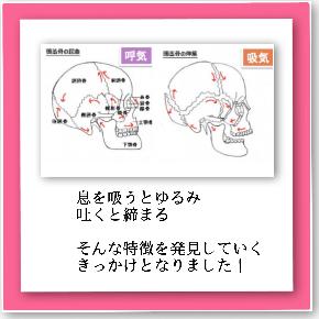 image5 (23).JPG