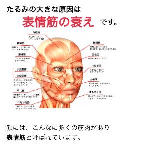 image1 - 2019-11-26T225511.816.JPG