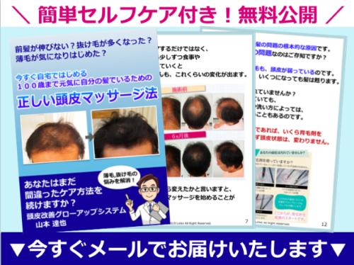 頭皮改善グローアップシステム電子書籍.png