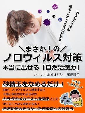 ノロウィルス電子書籍表紙.jpg