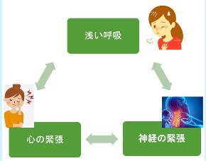 交感神経モードループ.jpg