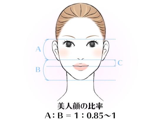 顔 比率.jpg