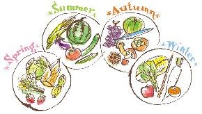 四季の野菜.jpg
